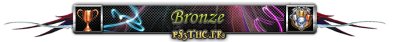 Trophées Bronze